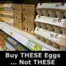 Buy THESE Eggs ... NOT These