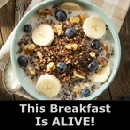 Try This Breakfast, It's Alive