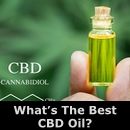 The Best CBD Oil